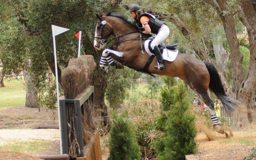 Meet Amanda Ross – Olympic Equestrian Rock Star